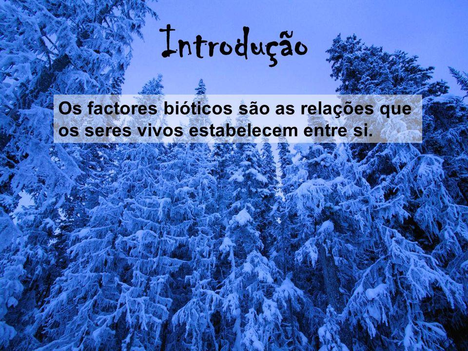 Introdução Os factores bióticos são as relações que os seres vivos estabelecem entre si.
