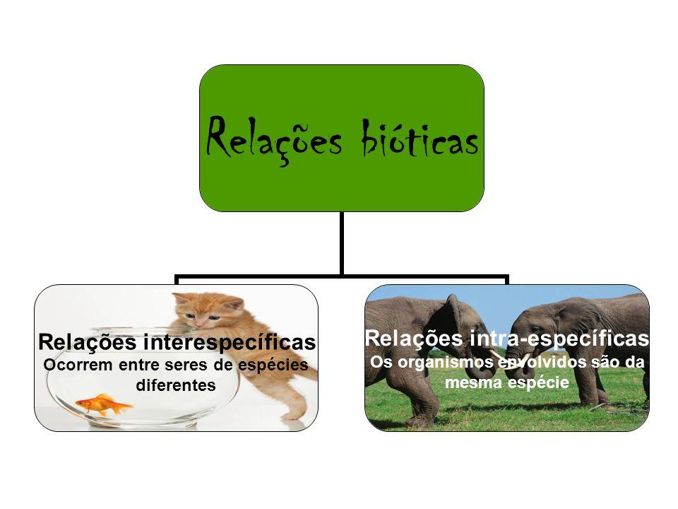 Relações bióticas Relações interespecíficas Ocorrem entre seres de espécies diferentes Relações intra-específicas Os organismos envolvidos são da mesm