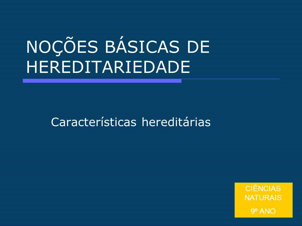 1 NOÇÕES BÁSICAS DE HEREDITARIEDADE Características hereditárias CIÊNCIAS NATURAIS 9º ANO