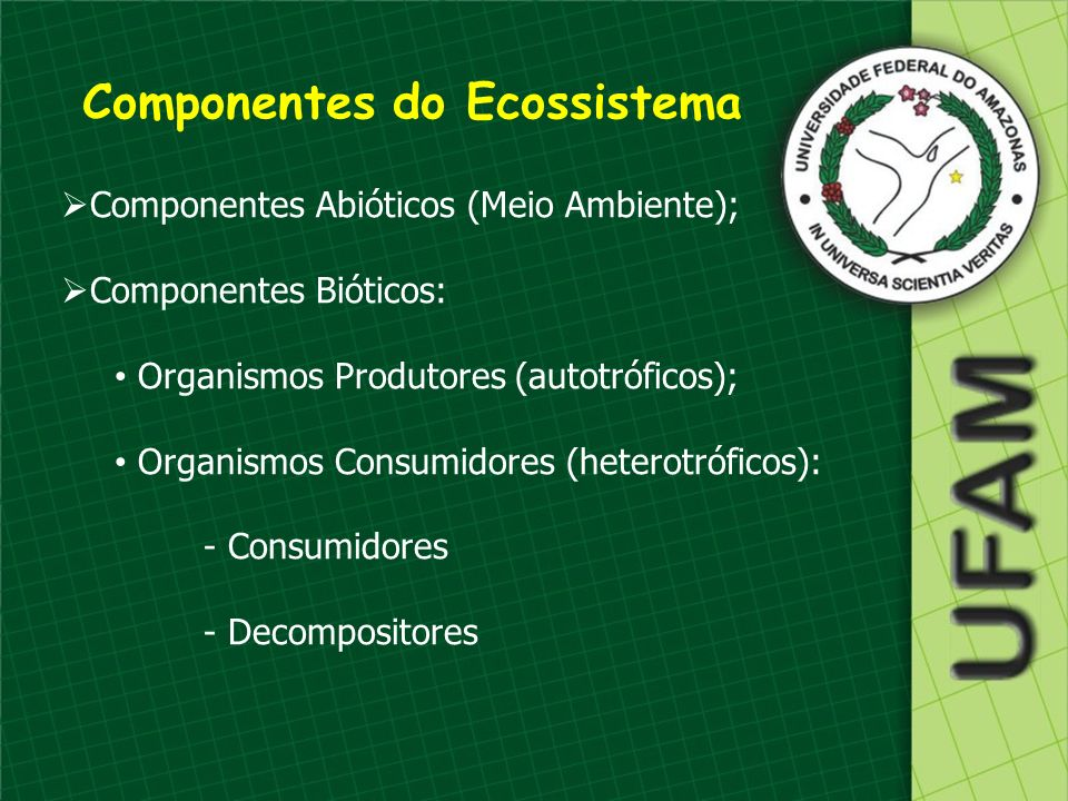 Componentes do Ecossistema Componentes Abióticos (Meio Ambiente); Componentes Bióticos: Organismos Produtores (autotróficos); Organismos Consumidores