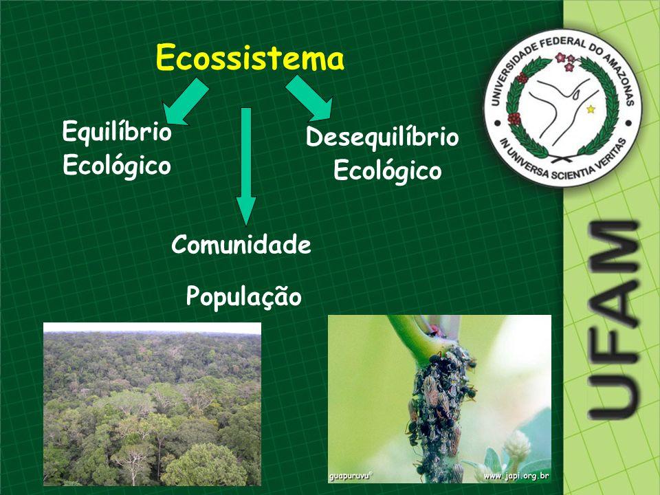 Habitat – lugar onde o organismo vive (morada) Habitat Nicho ecológico Nicho Ecológico – papel que o organismo exerce no ecossistema (profissão)