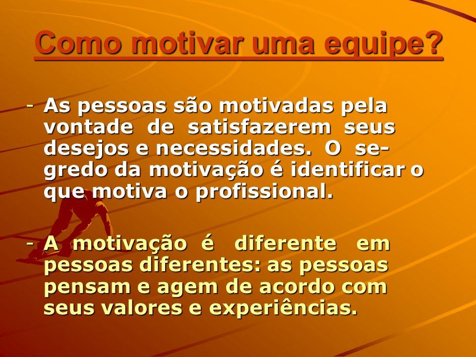 Como motivar uma equipe? -As pessoas são motivadas pela vontade de satisfazerem seus desejos e necessidades. O se- gredo da motivação é identificar o