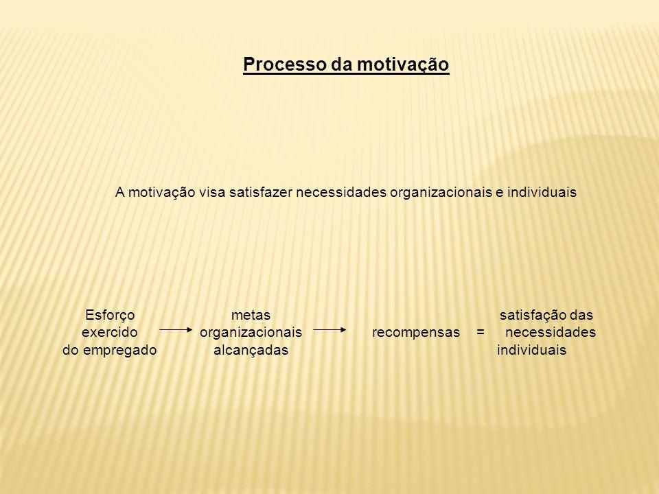 Processo da motivação A motivação visa satisfazer necessidades organizacionais e individuais Esforço exercido do empregado metas organizacionais alcançadas satisfação das recompensas = necessidades individuais