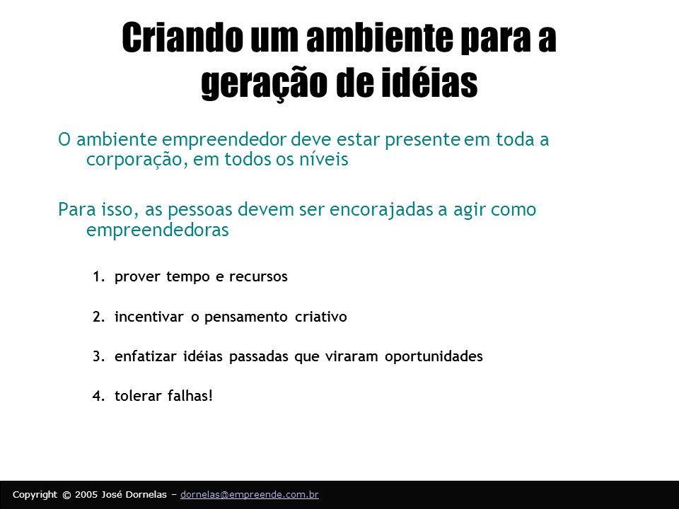 Copyright © 2005 José Dornelas – dornelas@empreende.com.brdornelas@empreende.com.br Criando um ambiente para a geração de idéias O ambiente empreendedor deve estar presente em toda a corporação, em todos os níveis Para isso, as pessoas devem ser encorajadas a agir como empreendedoras 1.prover tempo e recursos 2.incentivar o pensamento criativo 3.enfatizar idéias passadas que viraram oportunidades 4.tolerar falhas!
