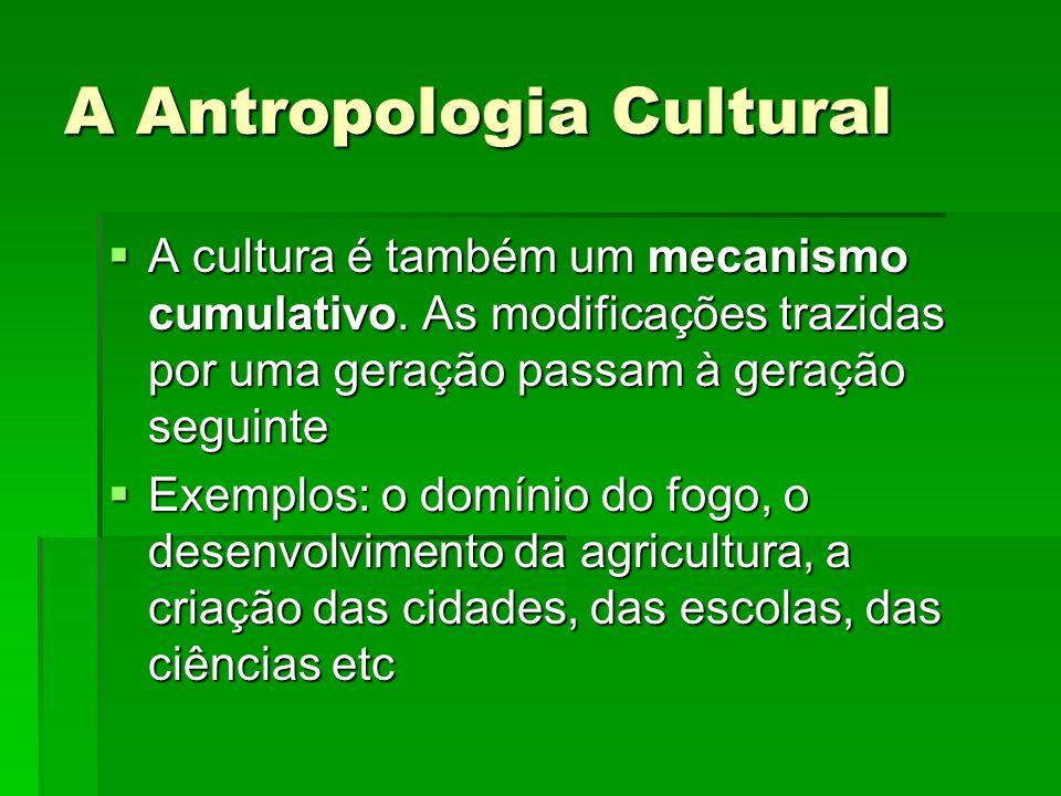 A Antropologia Cultural A cultura é também um mecanismo cumulativo. As modificações trazidas por uma geração passam à geração seguinte A cultura é tam