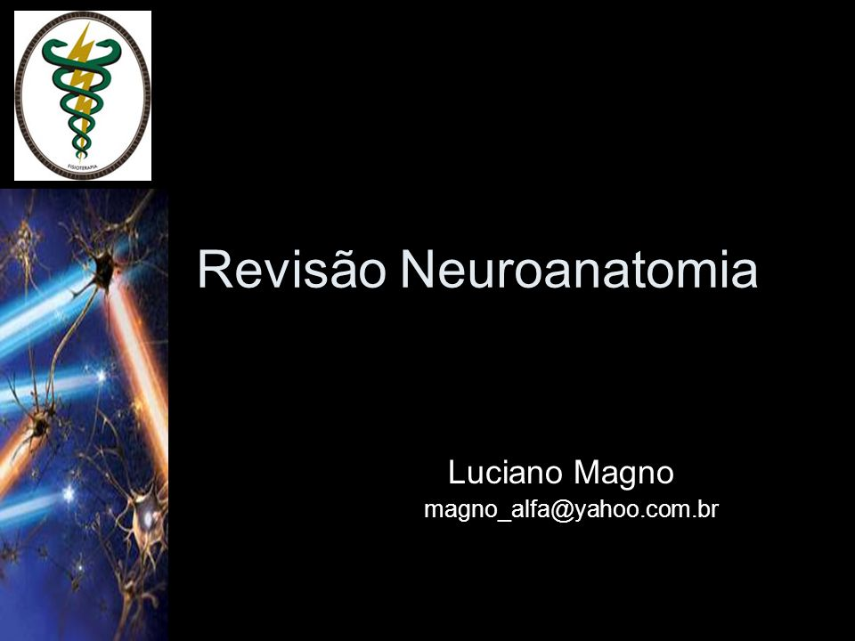 Neurociência Prof.: Luciano Magno aula 01 DIVISÃO DO SISTEMA NERVOSO Sistema Nervoso Central Sistema Nervoso Periférico encéfalo medula espinhal cérebro cerebelo tronco encefálico mesencéfalo ponte bulbo nervos gânglios terminações nervosas espinhais cranianos