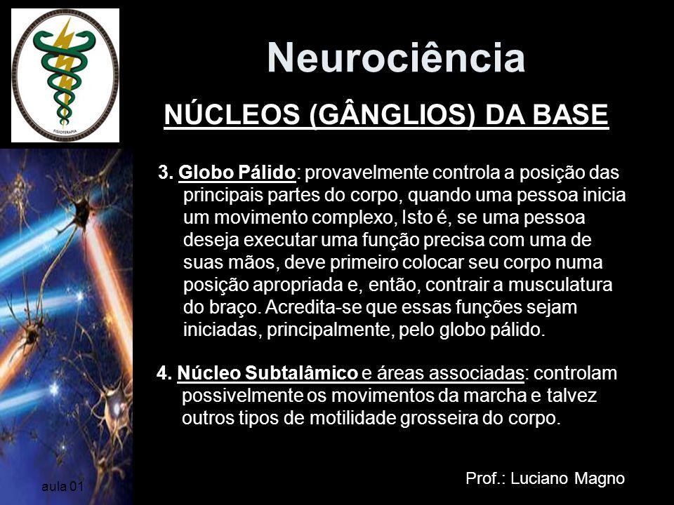 Neurociência Prof.: Luciano Magno aula 01 3. Globo Pálido: provavelmente controla a posição das principais partes do corpo, quando uma pessoa inicia u