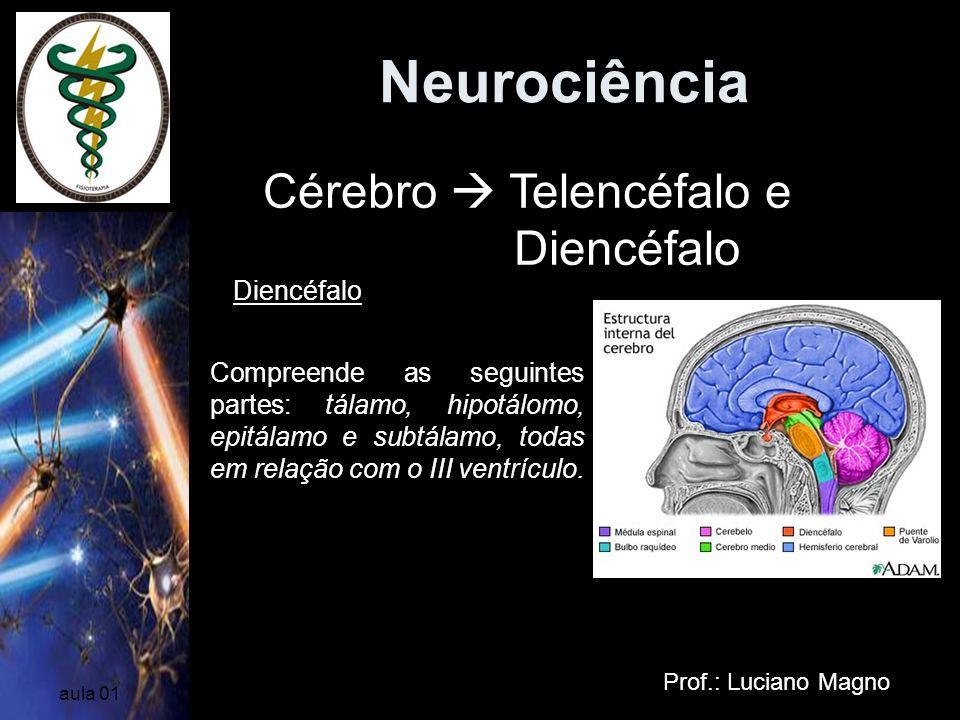 Neurociência Prof.: Luciano Magno aula 01 Diencéfalo Cérebro Telencéfalo e Diencéfalo Compreende as seguintes partes: tálamo, hipotálomo, epitálamo e