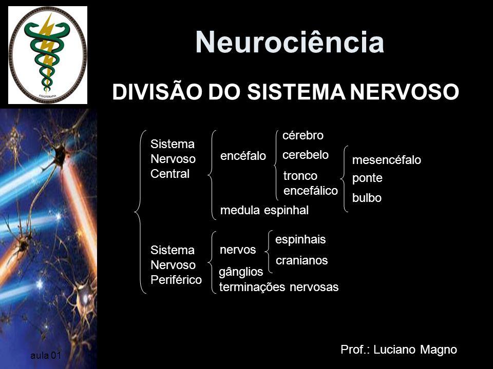 Neurociência Prof.: Luciano Magno aula 01 DIVISÃO DO SISTEMA NERVOSO Sistema Nervoso Central Sistema Nervoso Periférico encéfalo medula espinhal céreb