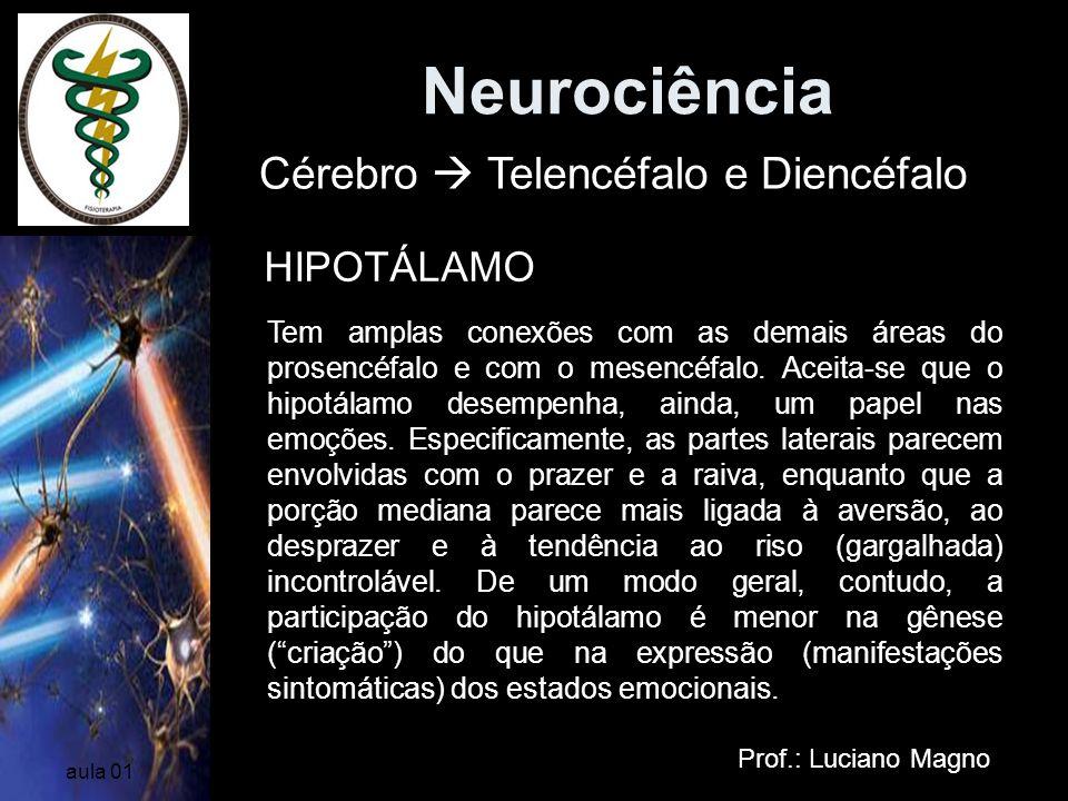 Neurociência Prof.: Luciano Magno aula 01 Cérebro Telencéfalo e Diencéfalo HIPOTÁLAMO Tem amplas conexões com as demais áreas do prosencéfalo e com o