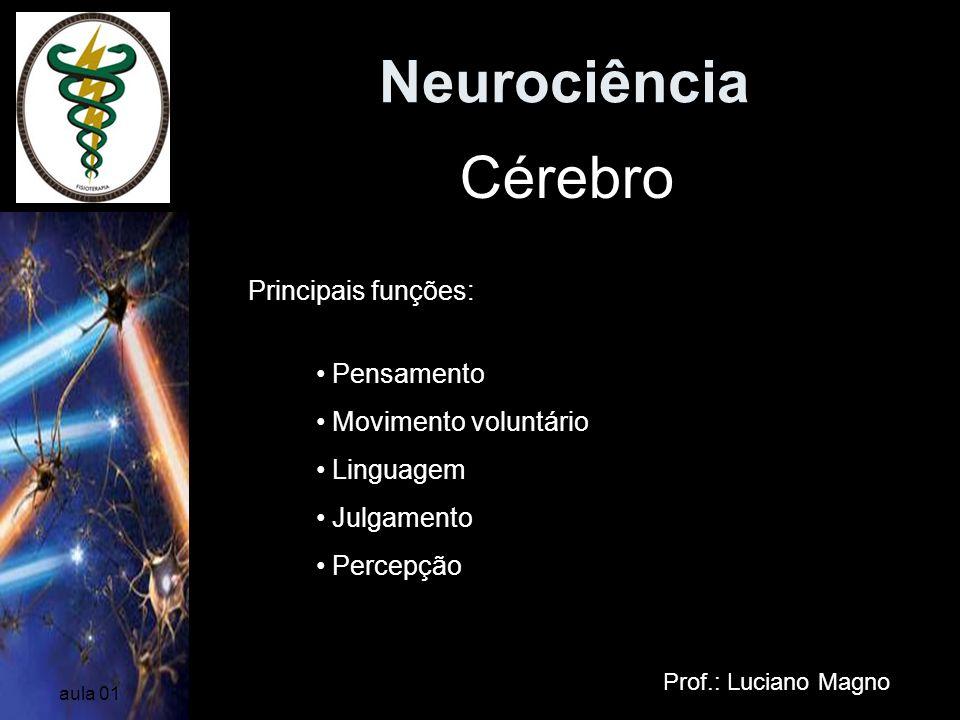 Neurociência Prof.: Luciano Magno aula 01 Cérebro Principais funções: Pensamento Movimento voluntário Linguagem Julgamento Percepção