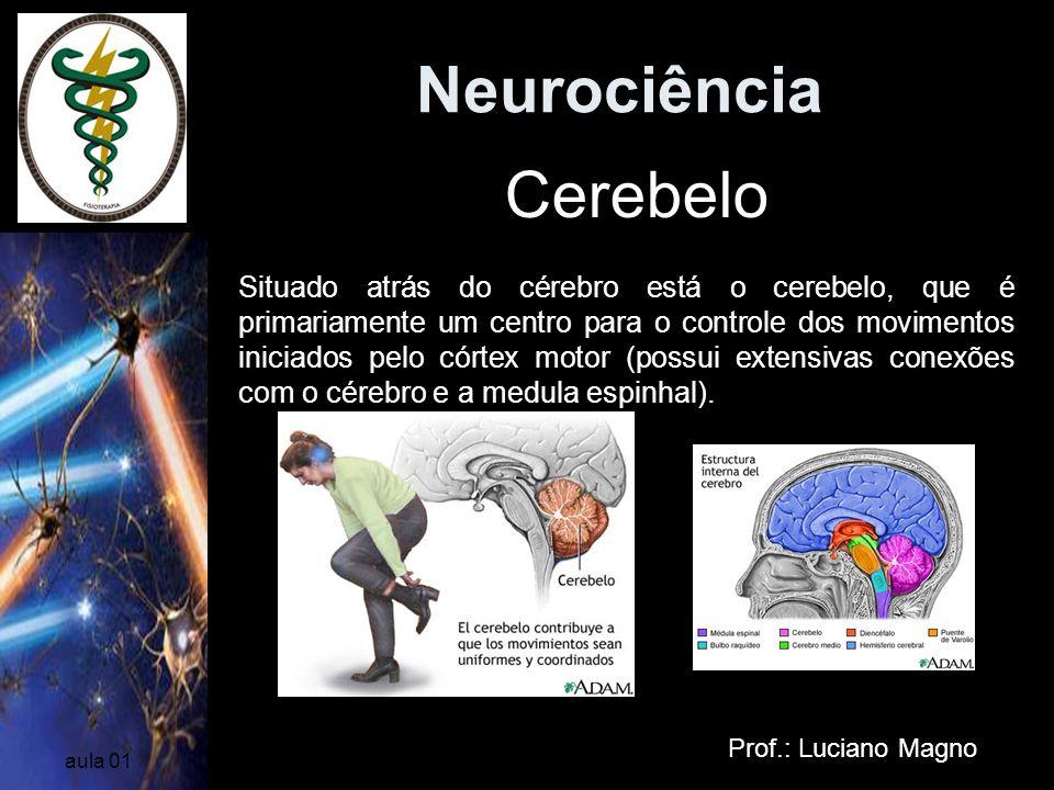 Neurociência Prof.: Luciano Magno aula 01 Cerebelo Situado atrás do cérebro está o cerebelo, que é primariamente um centro para o controle dos movimen