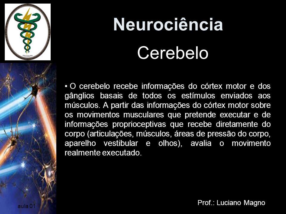 Neurociência Prof.: Luciano Magno aula 01 O cerebelo recebe informações do córtex motor e dos gânglios basais de todos os estímulos enviados aos múscu