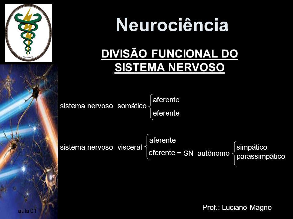 Neurociência Prof.: Luciano Magno aula 01 DIVISÃO FUNCIONAL DO SISTEMA NERVOSO sistema nervoso somático sistema nervoso visceral aferente eferente = S
