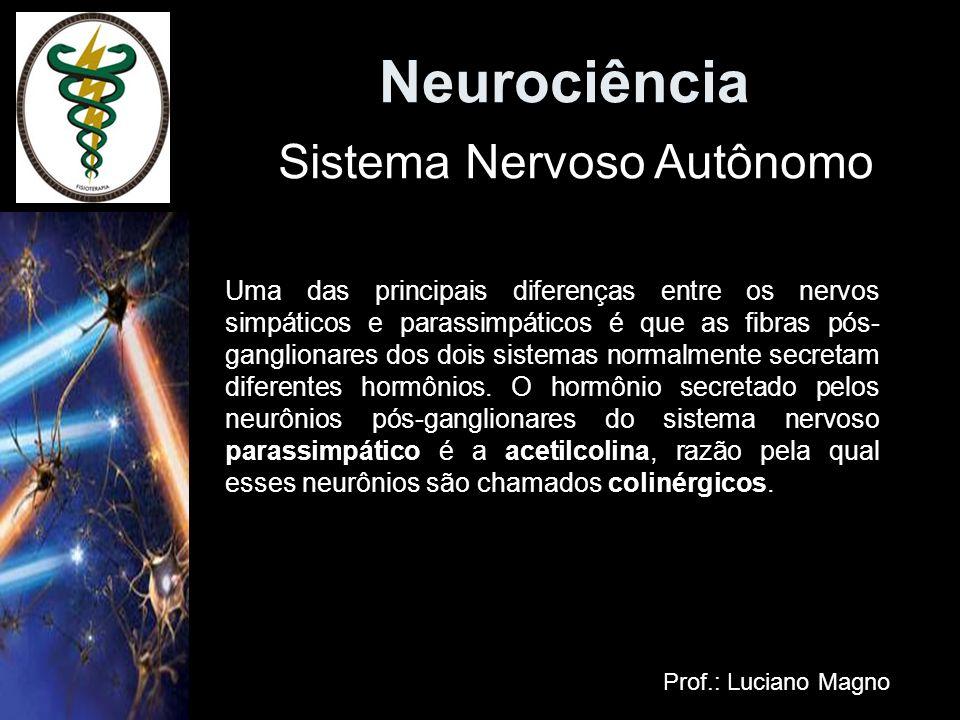 Neurociência Prof.: Luciano Magno Uma das principais diferenças entre os nervos simpáticos e parassimpáticos é que as fibras pós- ganglionares dos doi