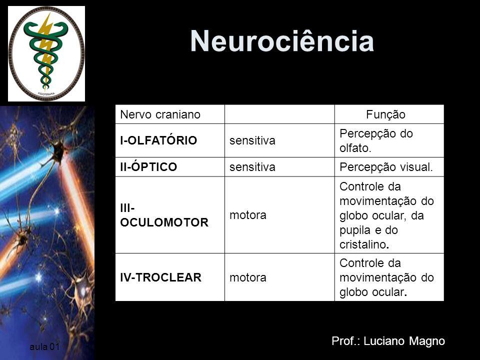 Neurociência Prof.: Luciano Magno aula 01 Nervo craniano Função I-OLFATÓRIOsensitiva Percepção do olfato. II-ÓPTICOsensitivaPercepção visual. III- OCU