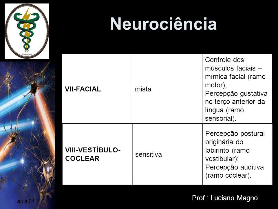 Neurociência Prof.: Luciano Magno aula 01 VII-FACIALmista Controle dos músculos faciais – mímica facial (ramo motor); Percepção gustativa no terço ant