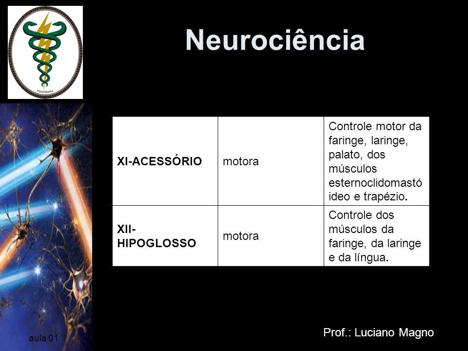 Neurociência Prof.: Luciano Magno aula 01 XI-ACESSÓRIOmotora Controle motor da faringe, laringe, palato, dos músculos esternoclidomastó ideo e trapézi