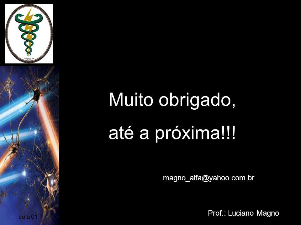 Prof.: Luciano Magno aula 01 Muito obrigado, até a próxima!!! magno_alfa@yahoo.com.br