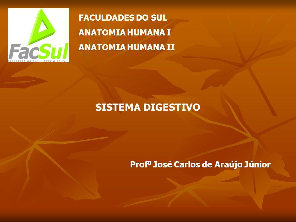 FACULDADES DO SUL ANATOMIA HUMANA I ANATOMIA HUMANA II SISTEMA DIGESTIVO Prof 0 José Carlos de Araújo Júnior