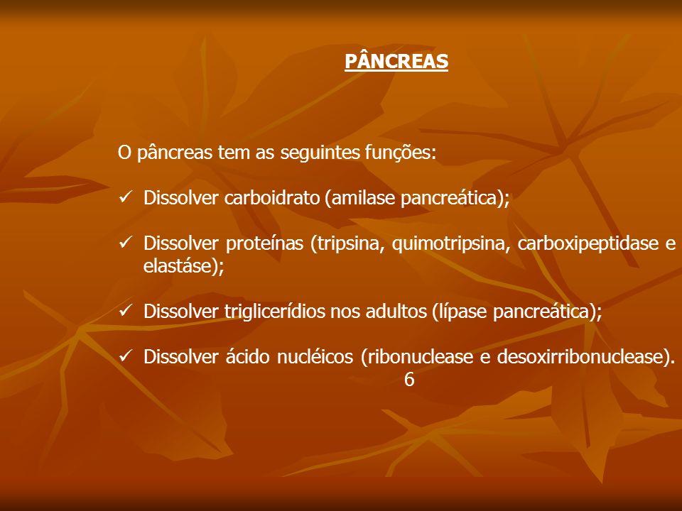 PÂNCREAS O pâncreas tem as seguintes funções: Dissolver carboidrato (amilase pancreática); Dissolver proteínas (tripsina, quimotripsina, carboxipeptidase e elastáse); Dissolver triglicerídios nos adultos (lípase pancreática); Dissolver ácido nucléicos (ribonuclease e desoxirribonuclease).