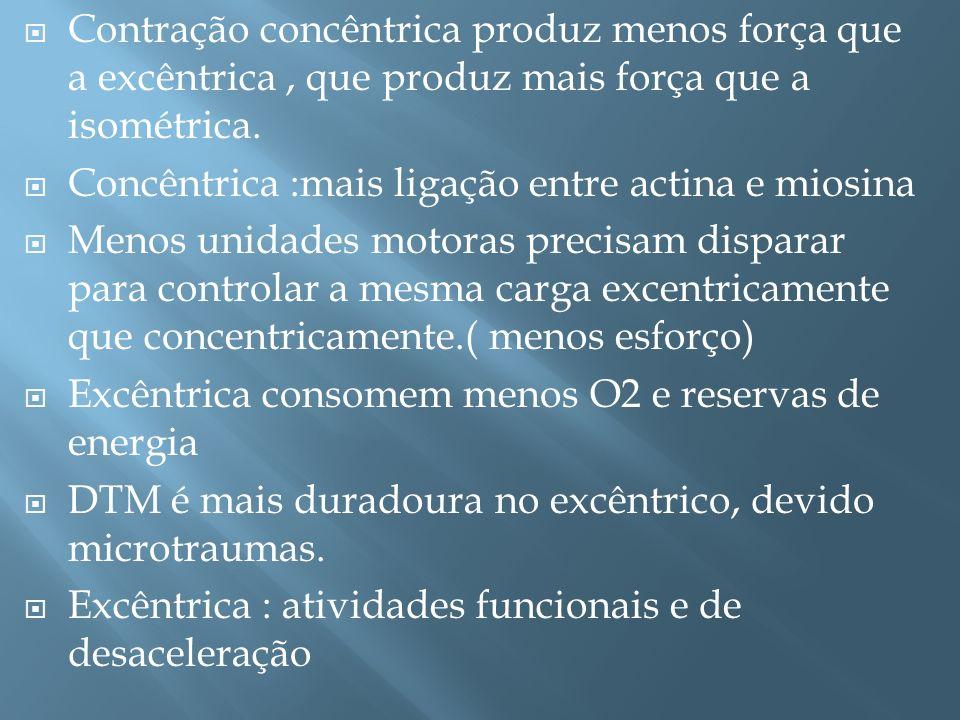 Contração concêntrica produz menos força que a excêntrica, que produz mais força que a isométrica. Concêntrica :mais ligação entre actina e miosina Me