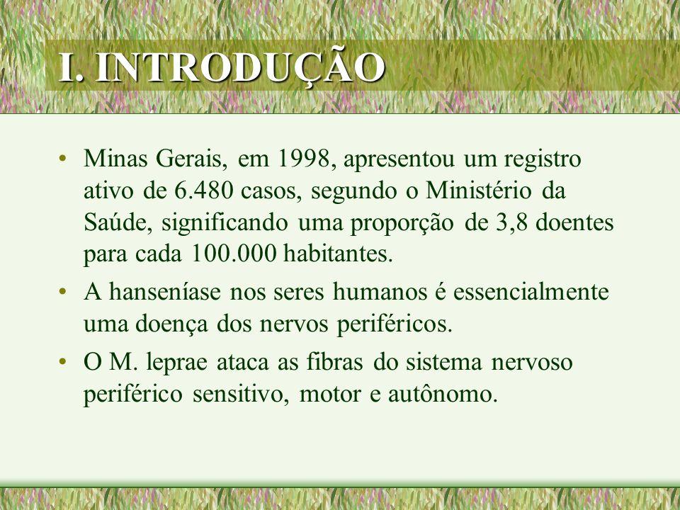I. INTRODUÇÃO Minas Gerais, em 1998, apresentou um registro ativo de 6.480 casos, segundo o Ministério da Saúde, significando uma proporção de 3,8 doe