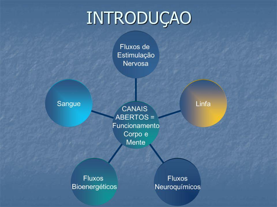INTRODUÇAO CANAIS ABERTOS = Funcionamento Corpo e Mente Fluxos de Estimulação Nervosa Linfa Fluxos Neuroquímicos Fluxos Bioenergéticos Sangue