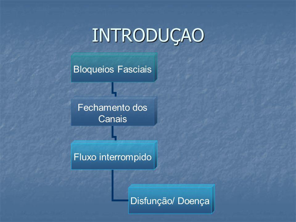INTRODUÇAO Bloqueios Fasciais Fechamento dos Canais Fluxo interrompido Disfunção/ Doença