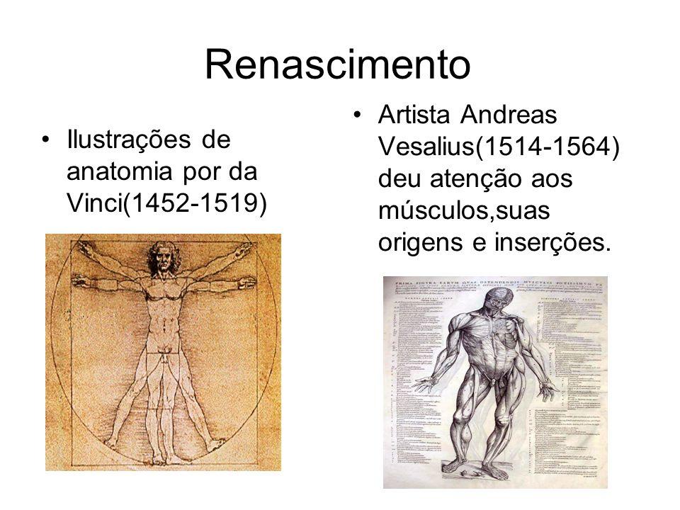 Renascimento Ilustrações de anatomia por da Vinci(1452-1519) Artista Andreas Vesalius(1514-1564) deu atenção aos músculos,suas origens e inserções.