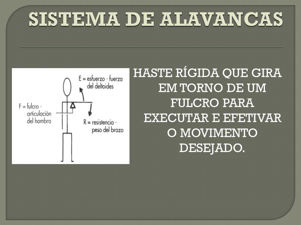 ALAVANCA: Haste Rígida (ossos) EIXO: ponto de fixação mas que permite mobilidade (parafuso – articulação).