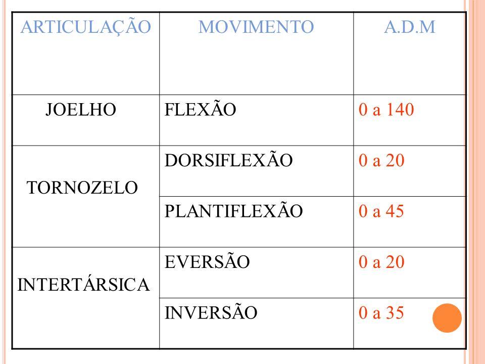 ARTICULAÇÃOMOVIMENTOA.D.M JOELHOFLEXÃO0 a 140 TORNOZELO DORSIFLEXÃO0 a 20 PLANTIFLEXÃO0 a 45 INTERTÁRSICA EVERSÃO0 a 20 INVERSÃO0 a 35