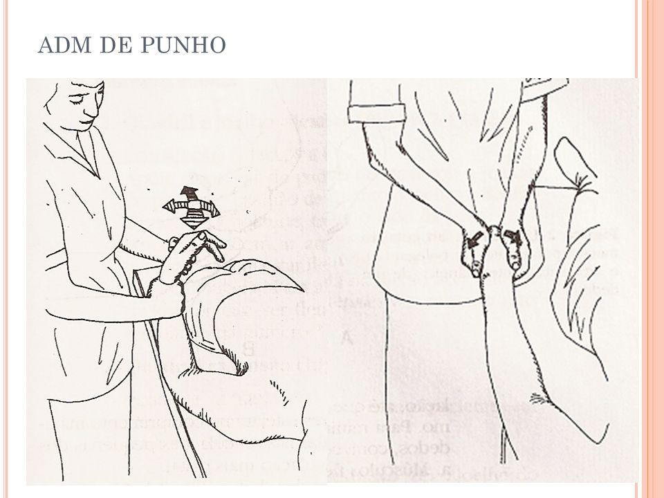 ADM DE PUNHO