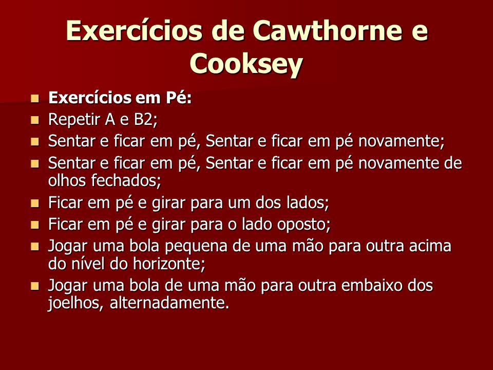 Exercícios de Cawthorne e Cooksey Exercícios em Pé: Exercícios em Pé: Repetir A e B2; Repetir A e B2; Sentar e ficar em pé, Sentar e ficar em pé novam