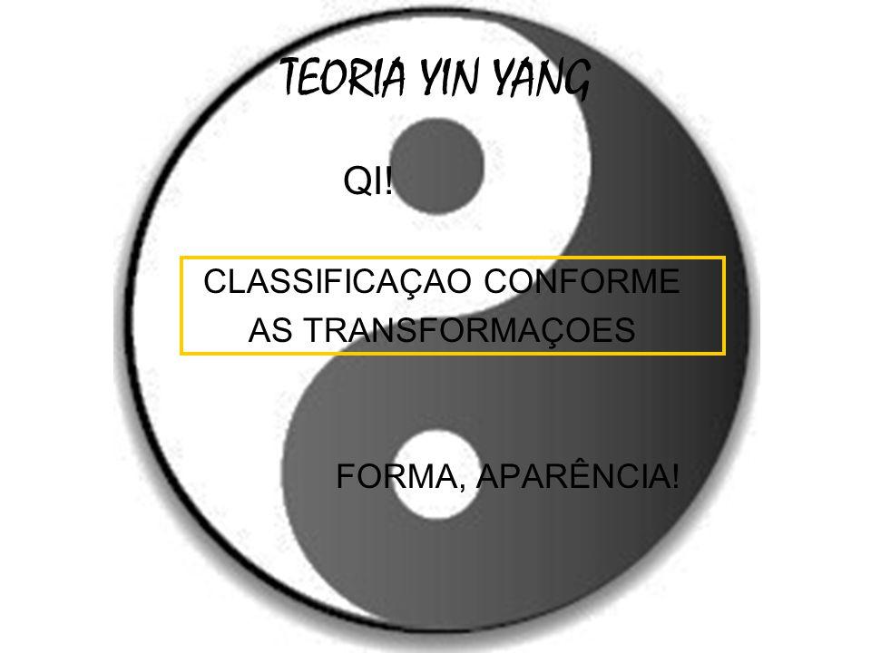 TEORIA YIN YANG QI! CLASSIFICAÇAO CONFORME AS TRANSFORMAÇOES FORMA, APARÊNCIA!