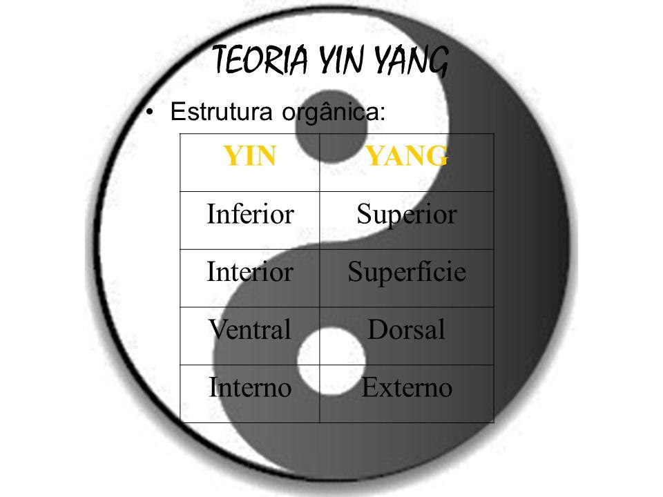 TEORIA YIN YANG Estrutura orgânica: YINYANG InferiorSuperior InteriorSuperfície VentralDorsal InternoExterno