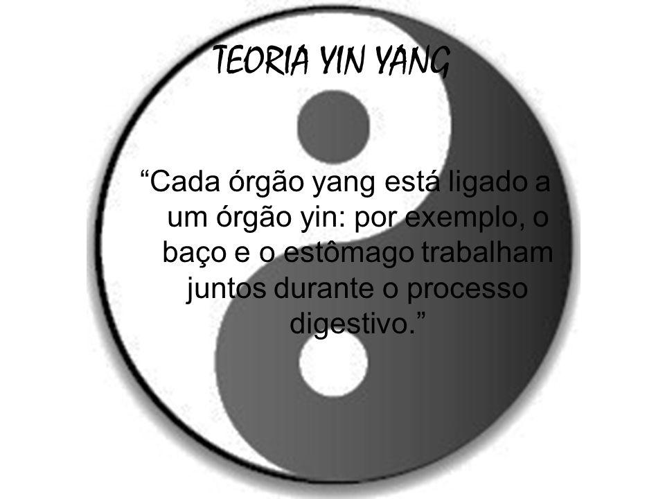 TEORIA YIN YANG Cada órgão yang está ligado a um órgão yin: por exemplo, o baço e o estômago trabalham juntos durante o processo digestivo.