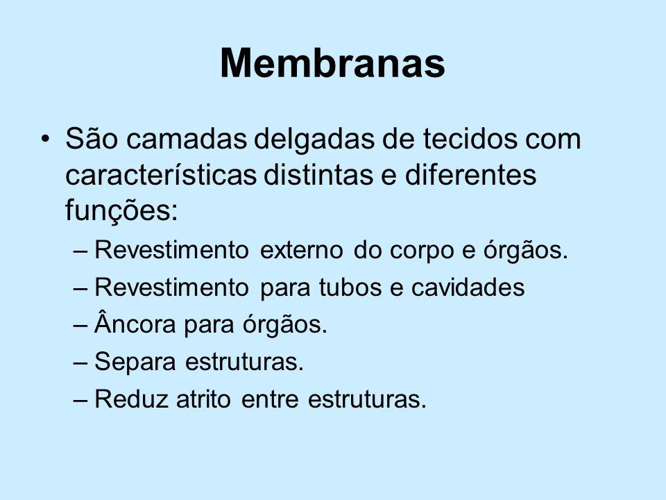 Membranas São camadas delgadas de tecidos com características distintas e diferentes funções: –Revestimento externo do corpo e órgãos. –Revestimento p