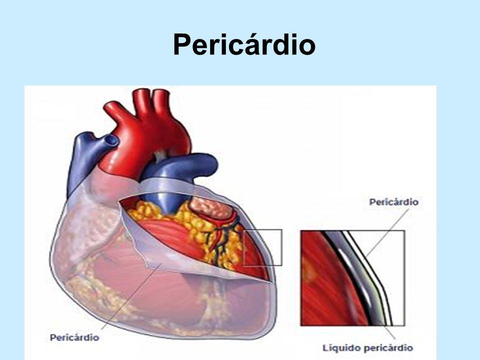 Pericárdio