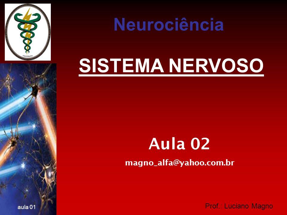 Prof.: Luciano Magno aula 01 IMPULSO NERVOSO O Terminal axonal e as Sinapses Tipos de conexões entre os neurônios: Axodendríticas Axossomáticas Dendrodentríticas Axoaxonicas Neurociência