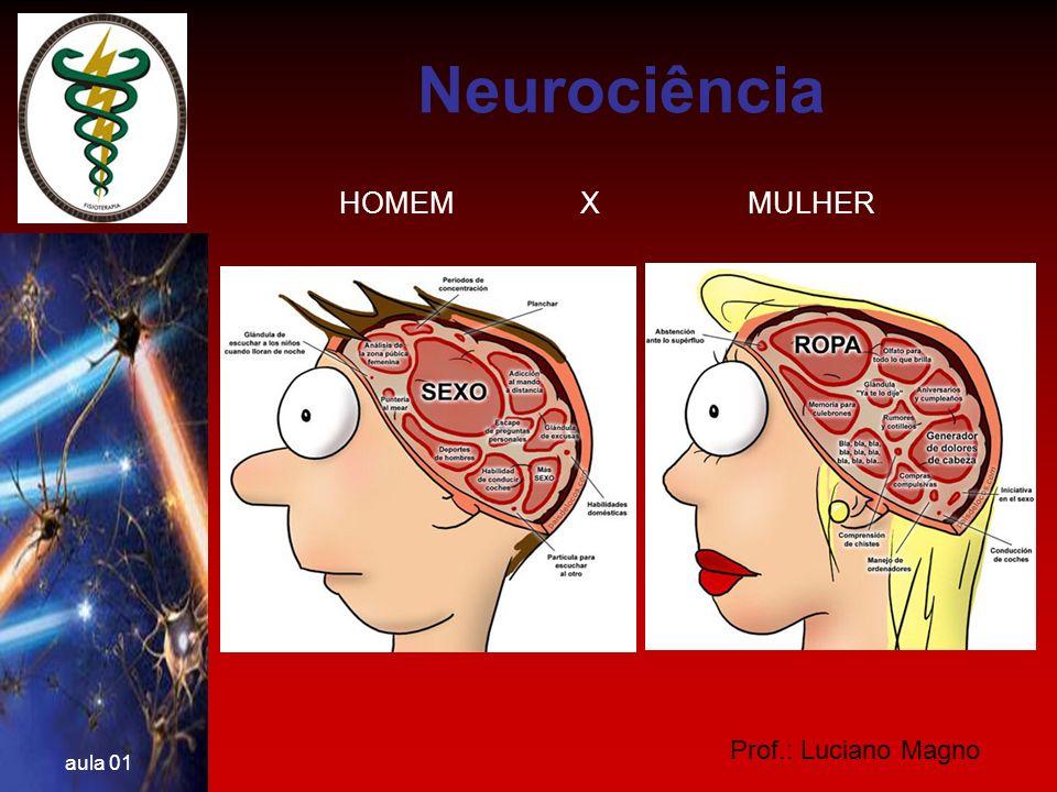Prof.: Luciano Magno aula 01 IMPULSO NERVOSO O Terminal axonal e as Sinapses ESTRUTURAS DE UMA SINAPSE Botões terminais Vesículas sinápticas (neurotransmissores) Membrana pré-sináptica Células Receptora Receptores Membrana pós- sináptica FENDA SINÁPTICA Axônio Neurociência