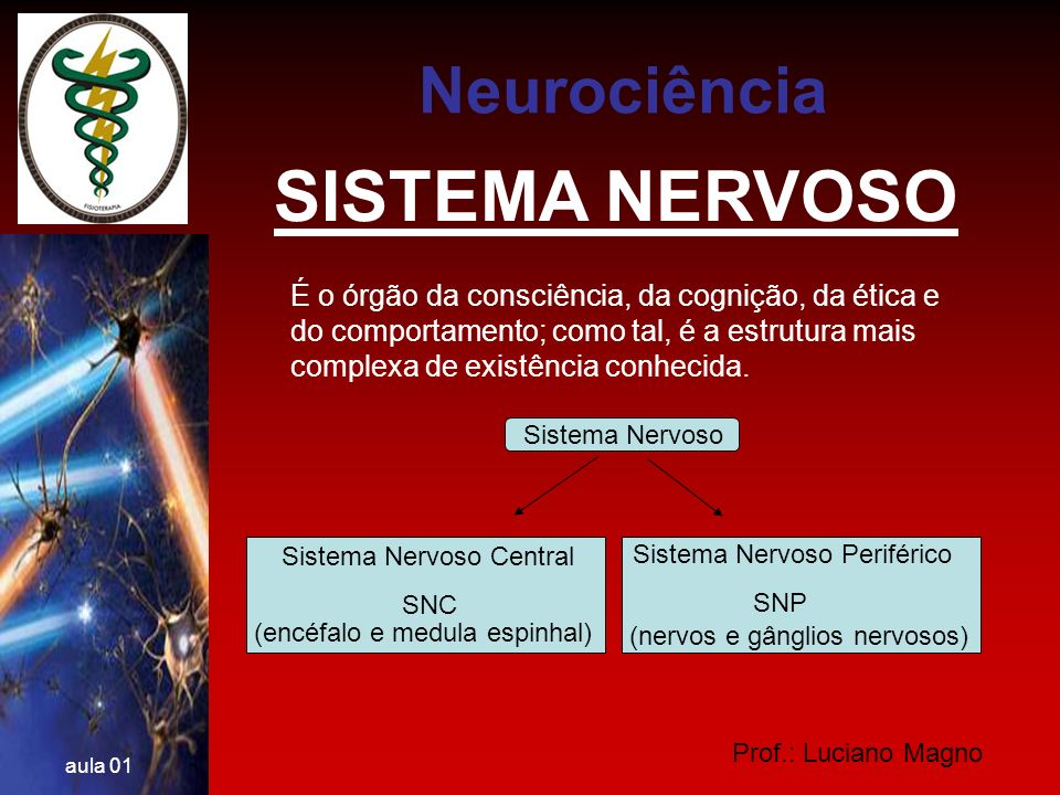 Prof.: Luciano Magno aula 01 SISTEMA NERVOSO Tecido Nervoso Neurônios céls.