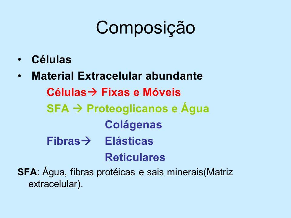 Composição Células Material Extracelular abundante Células Fixas e Móveis SFA Proteoglicanos e Água Colágenas Fibras Elásticas Reticulares SFA: Água,