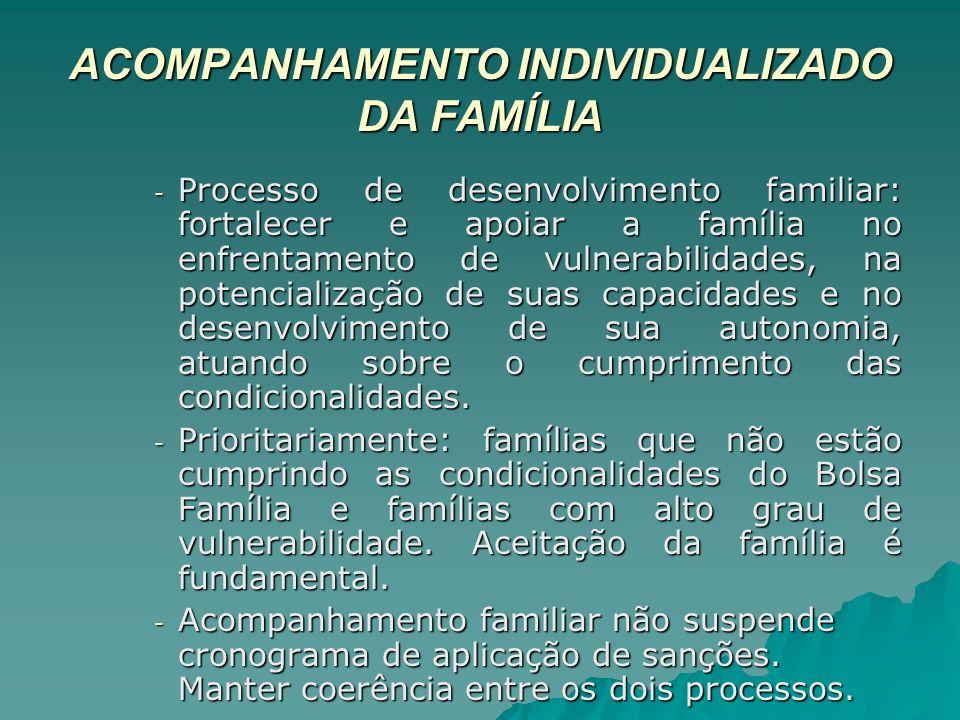 ACOMPANHAMENTO INDIVIDUALIZADO DA FAMÍLIA - Processo de desenvolvimento familiar: fortalecer e apoiar a família no enfrentamento de vulnerabilidades,