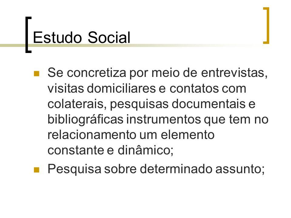 Estudo Social Se concretiza por meio de entrevistas, visitas domiciliares e contatos com colaterais, pesquisas documentais e bibliográficas instrument