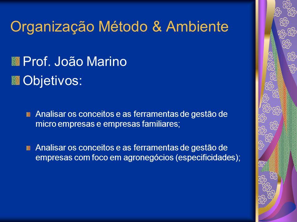 Organização Método & Ambiente Prof. João Marino Objetivos: Analisar os conceitos e as ferramentas de gestão de micro empresas e empresas familiares; A