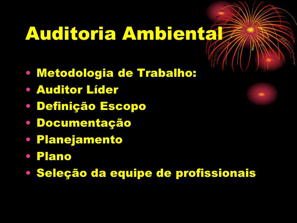 Auditoria Ambiental Metodologia de Trabalho: Auditor Líder Definição Escopo Documentação Planejamento Plano Seleção da equipe de profissionais