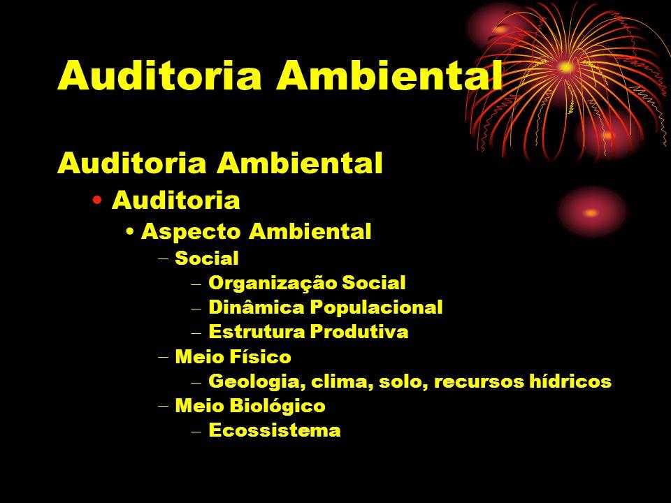Auditoria Ambiental Auditoria Aspecto Ambiental Social – Organização Social – Dinâmica Populacional – Estrutura Produtiva Meio Físico – Geologia, clim