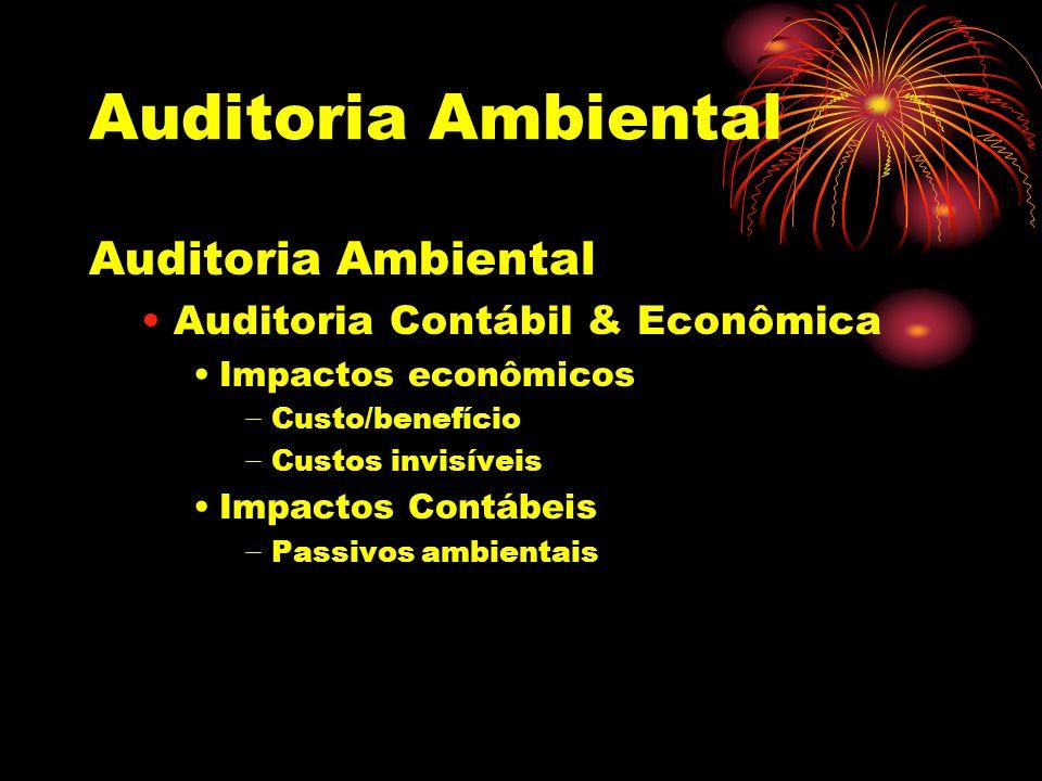 Auditoria Ambiental Auditoria Contábil & Econômica Impactos econômicos Custo/benefício Custos invisíveis Impactos Contábeis Passivos ambientais