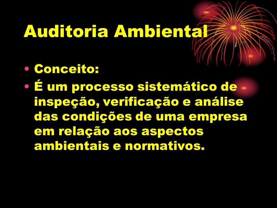 Auditoria Ambiental Conceito: É um processo sistemático de inspeção, verificação e análise das condições de uma empresa em relação aos aspectos ambien